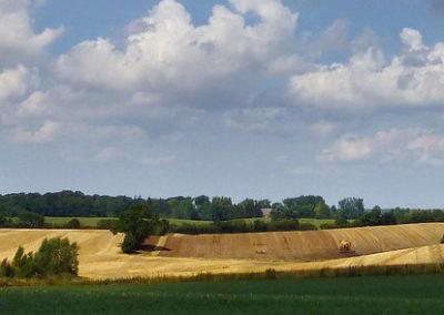 Landschaftsbild mit Feldern und Wolken