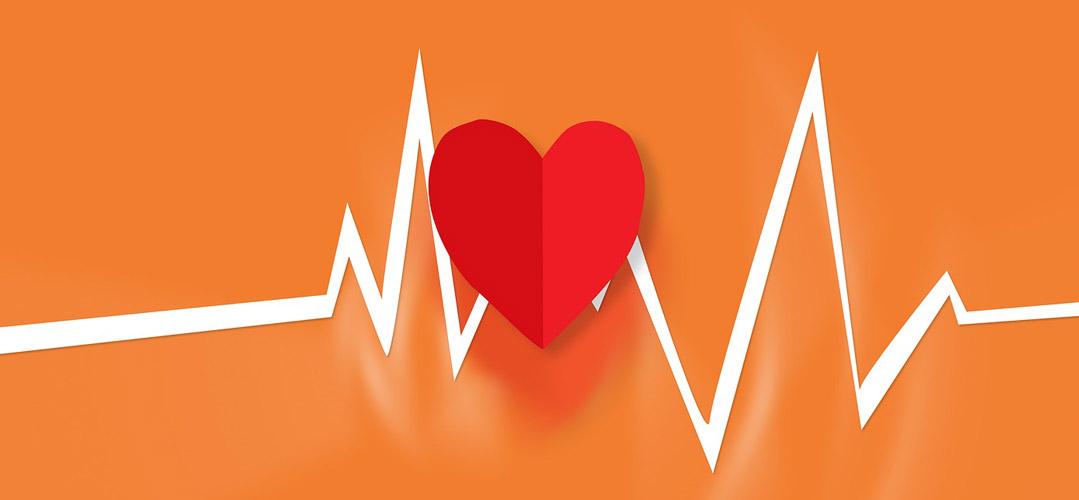 Rotes Herz mit weißer EKG Linie im Hintergrund